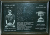Sam Maguire Wall